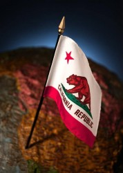 California Flag On Globe (image)