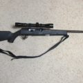 Savage  -  A17, .17HMR rifle.  $350.00  REDUCED!!  SOLD