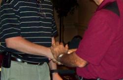 Shaking Hands (image)